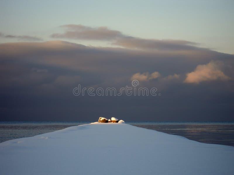 太阳的光芒阐明海洋防堤的末端 免版税库存照片