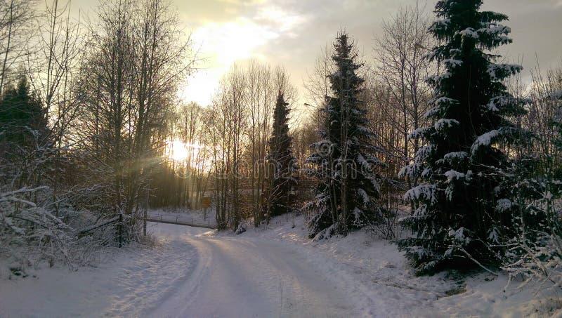 太阳的冬天土地 图库摄影