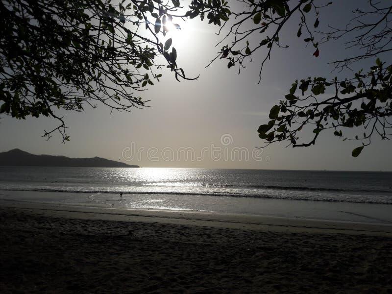 太阳的发光的光 免版税库存照片
