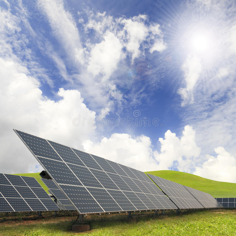 太阳能植物 免版税库存照片