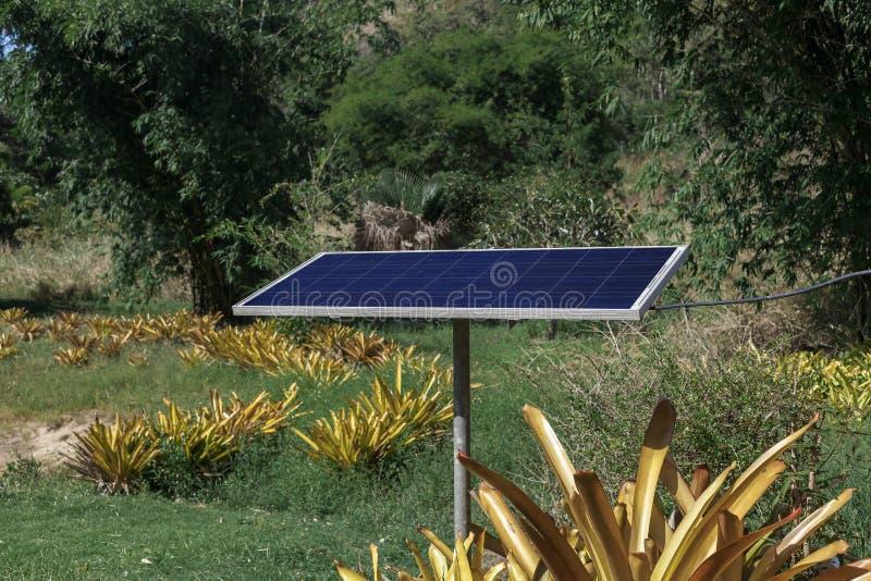 太阳能电池盘区在密林 免版税库存图片