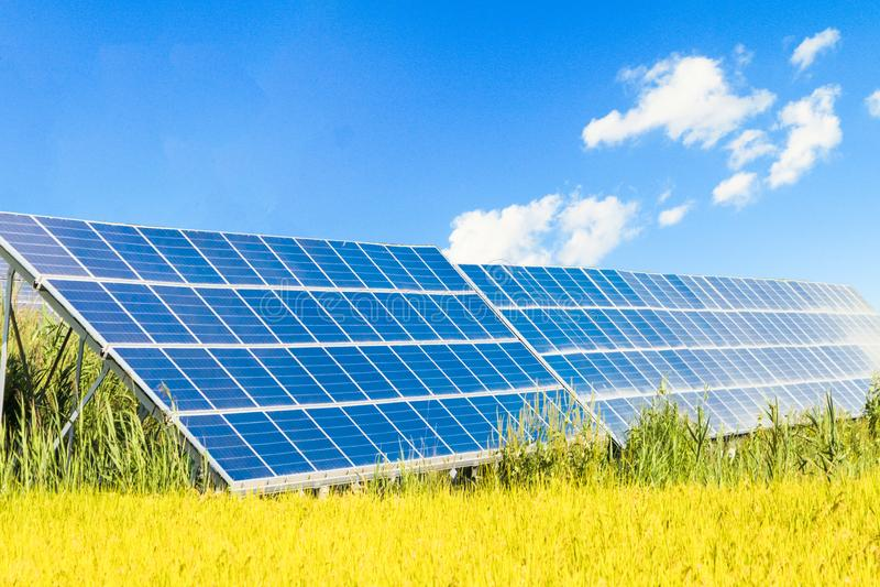 太阳能盘区,创新的光致电压的模块为生活绿化能量 库存图片