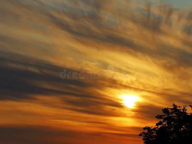 太阳落下 美丽的爱好者  免版税库存图片