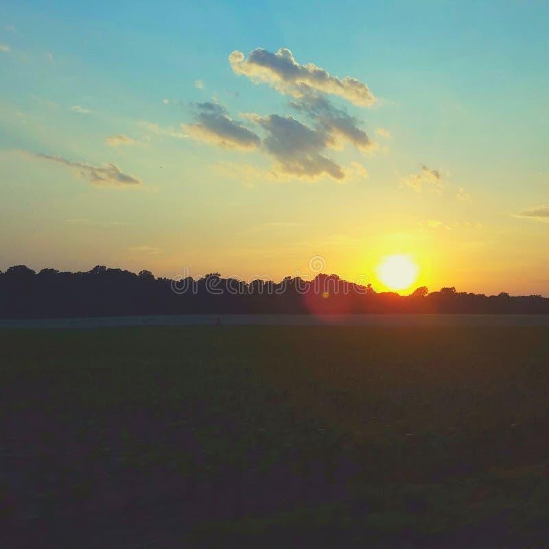 太阳设置了在麦地 免版税库存照片