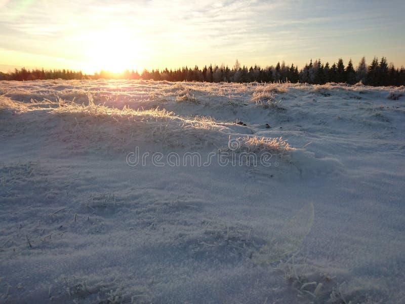 太阳转动斯诺伊小山对金子 免版税库存图片