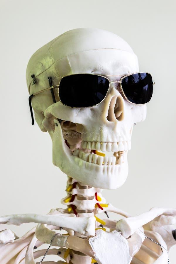 太阳镜可怕头骨 免版税库存图片