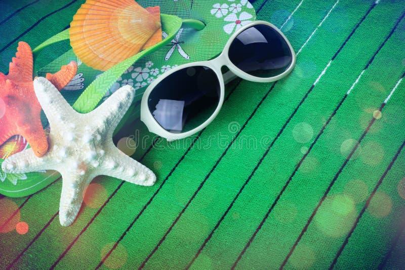 太阳镜和贝壳在绿色 库存照片