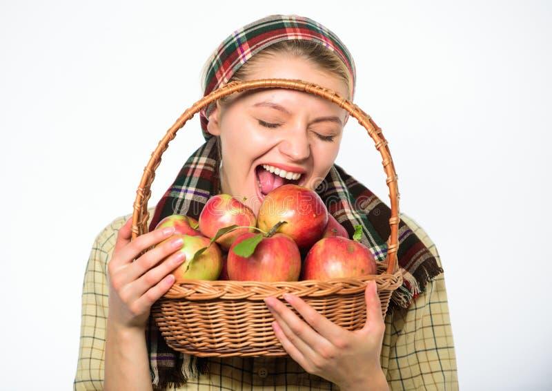 夫人农夫关于维生素健康营养的花匠关心 健康节食的概念 妇女花匠土气样式举行 库存图片