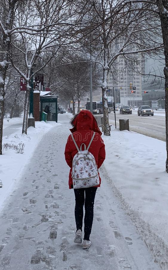 夫人在红色冬天 免版税图库摄影