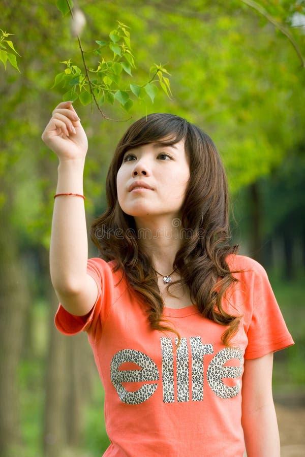 夫人年轻人 图库摄影