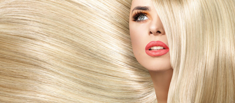 夫人的画象有平直和分蘖性发型的 库存图片