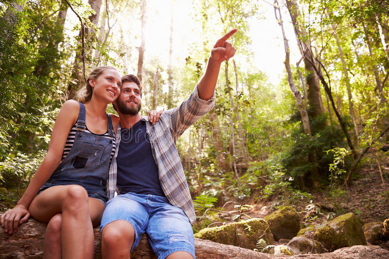 夫妇一起坐树干在森林里 免版税图库摄影