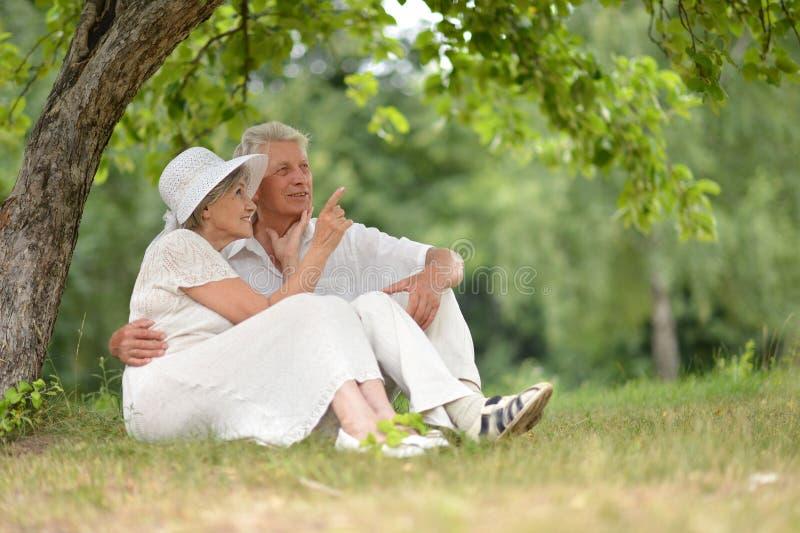 夫妇一起成熟 免版税库存照片