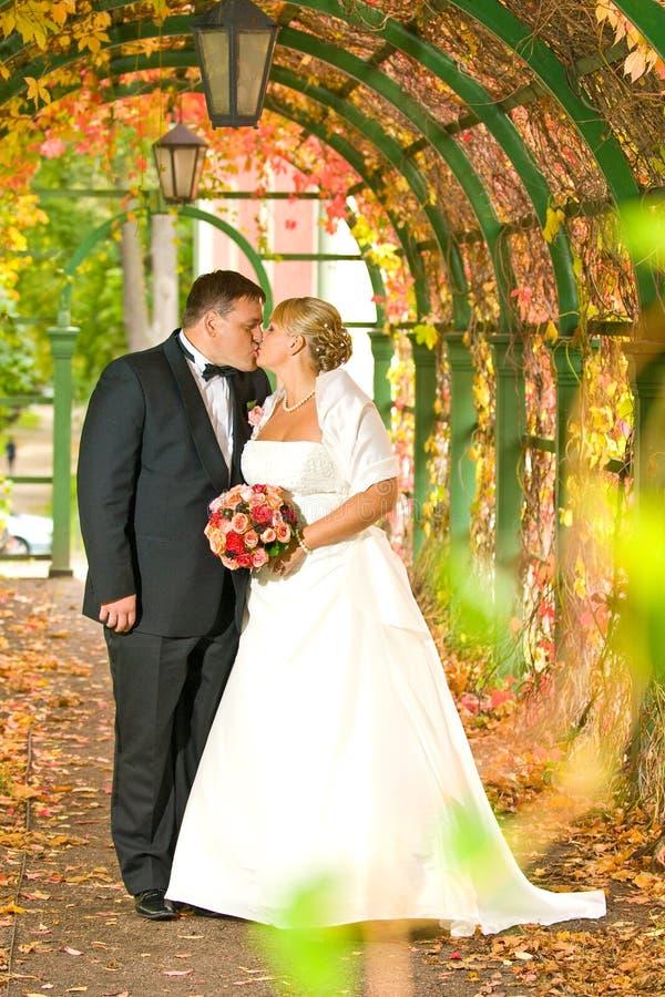 夫妇亲吻的婚礼 图库摄影