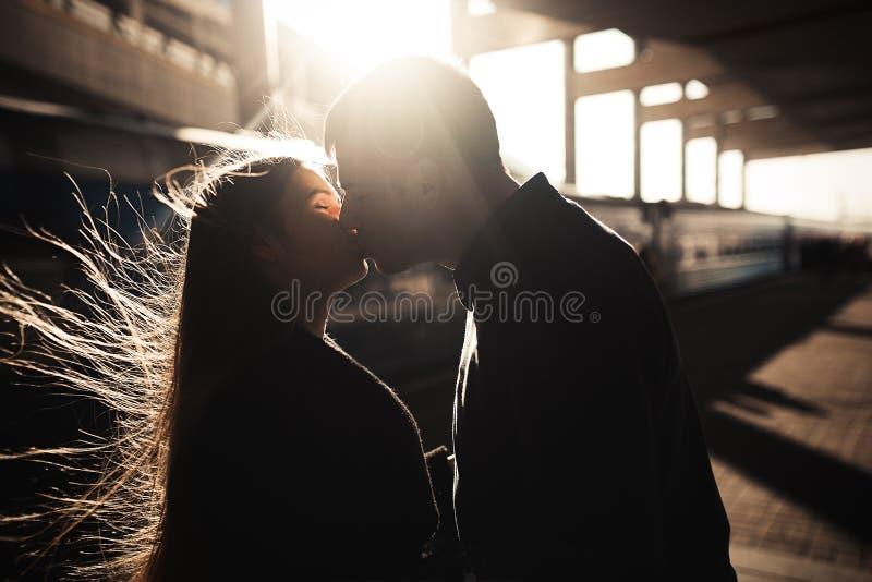 夫妇亲吻的剪影 免版税库存图片