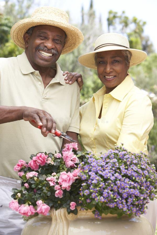 夫妇从事园艺的前辈一起 图库摄影