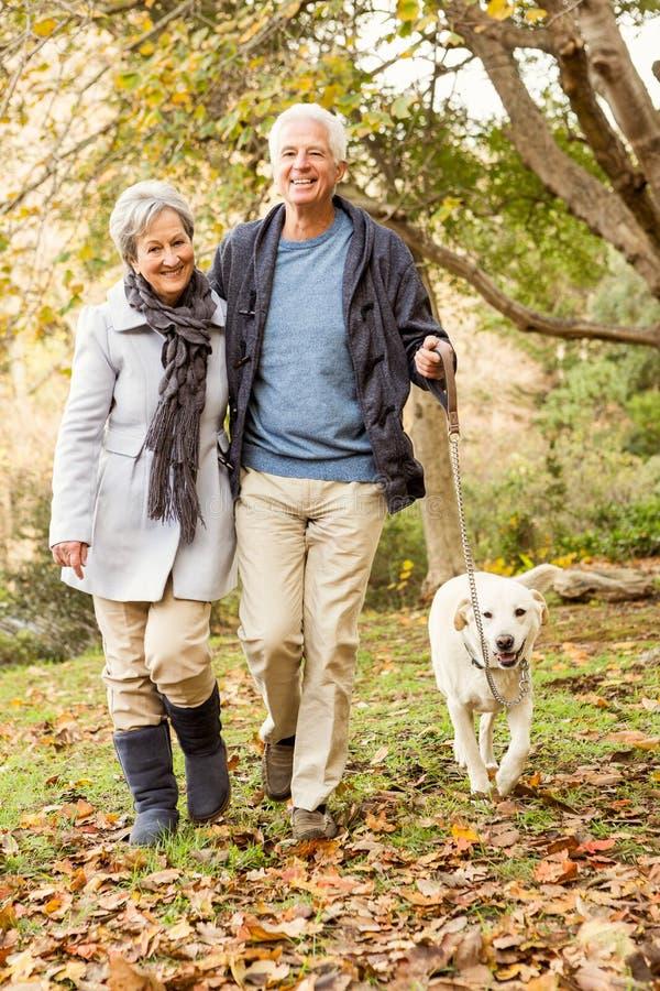 夫妇公园前辈微笑的联系 库存图片