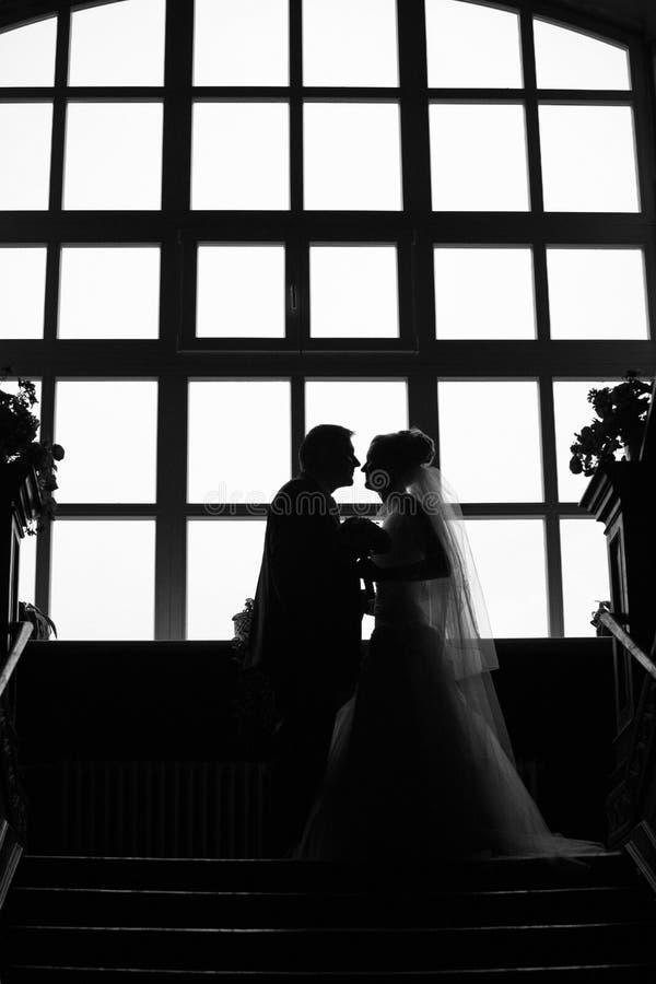 夫妇剪影婚礼 库存图片