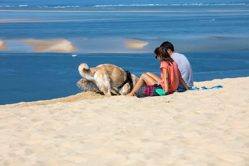 夫妇和金毛猎犬在Pilat沙丘,最高的沙丘在欧洲 拉泰斯特德比克,阿卡雄湾,阿基旃 免版税图库摄影