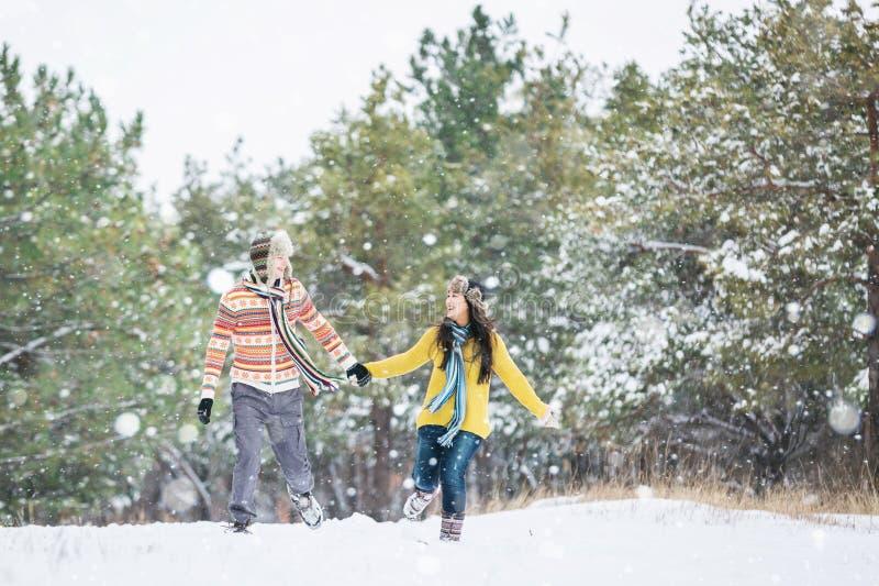 夫妇在冬天公园 免版税库存图片