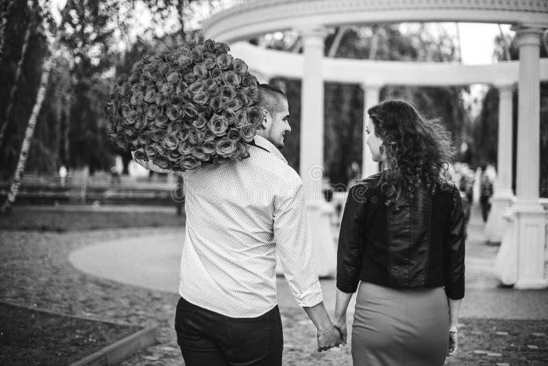 年轻夫妇在握手的公园 库存照片
