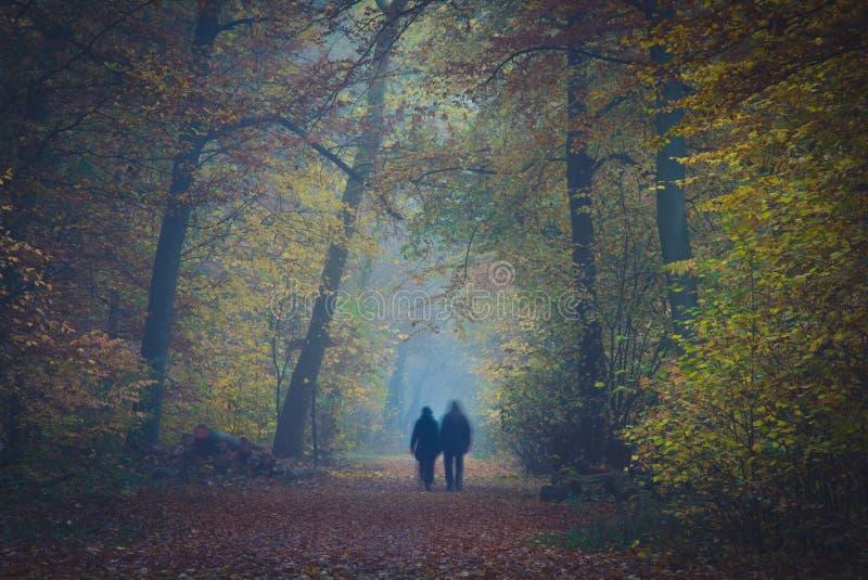 夫妇在有雾的森林里 库存照片
