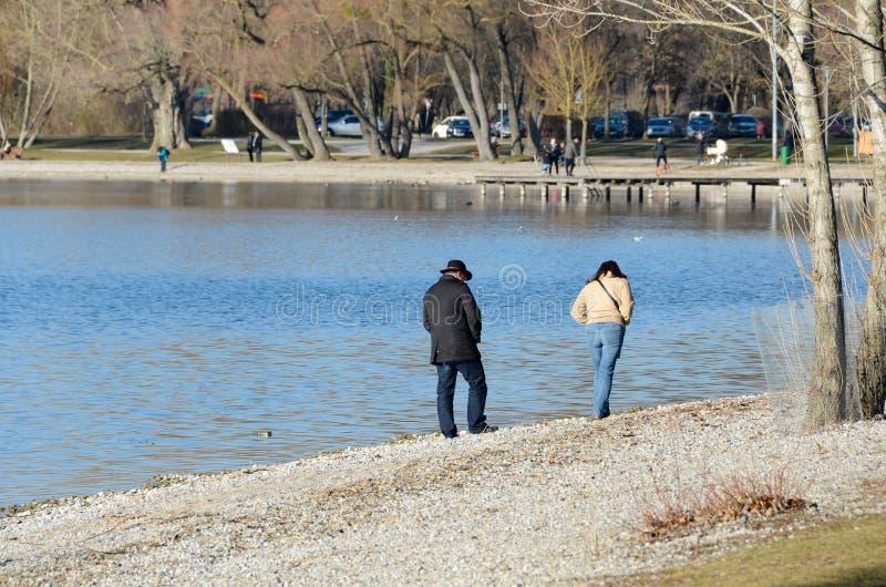 夫妇在湖2走 图库摄影