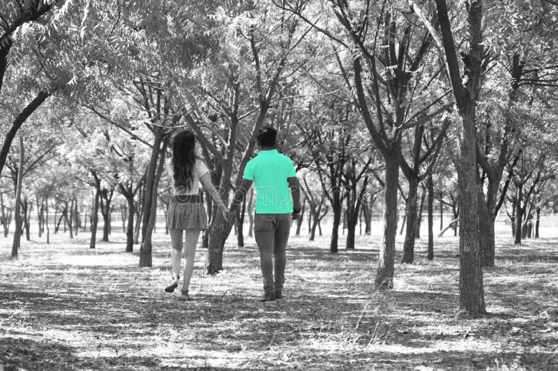 夫妇在灰色森林里,户外年轻十几岁 库存图片