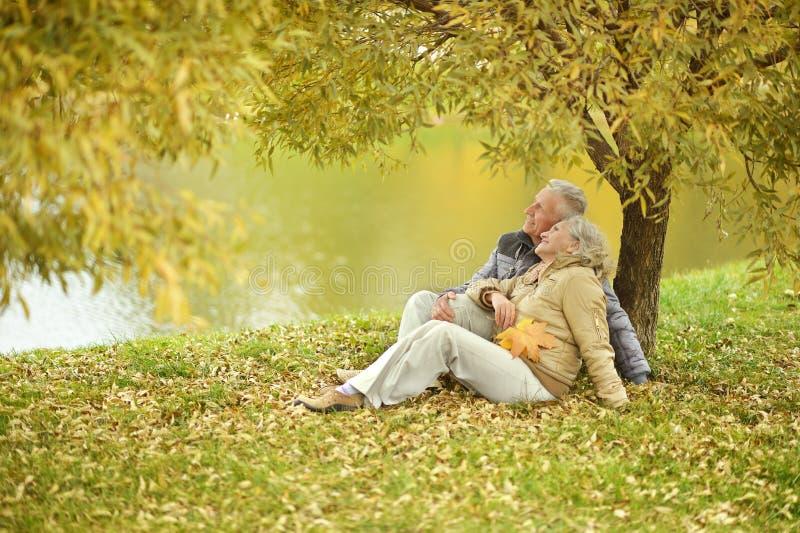 夫妇在秋天公园 免版税库存照片