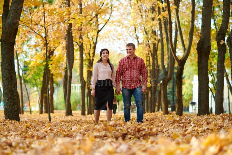 夫妇在秋天城市公园走 明亮的黄色树 免版税库存图片