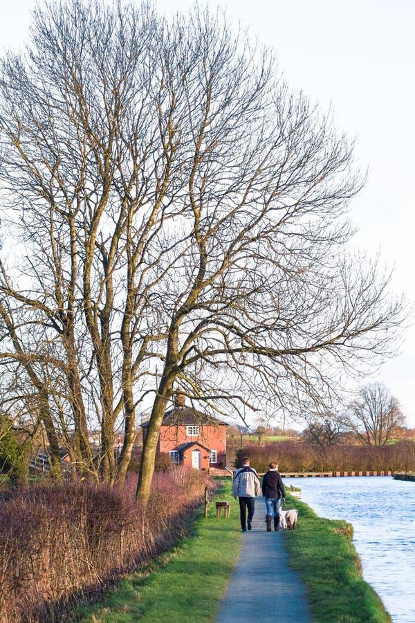 夫妇在英国遛他们的沿一条运河的爱犬 库存图片