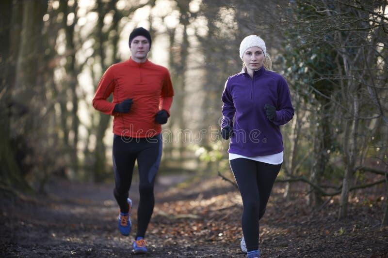 夫妇在通过森林地跑的冬天 库存照片