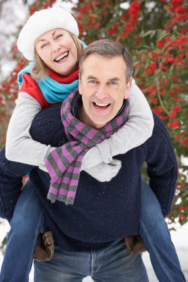夫妇在高级多雪之外环境美化 免版税库存图片