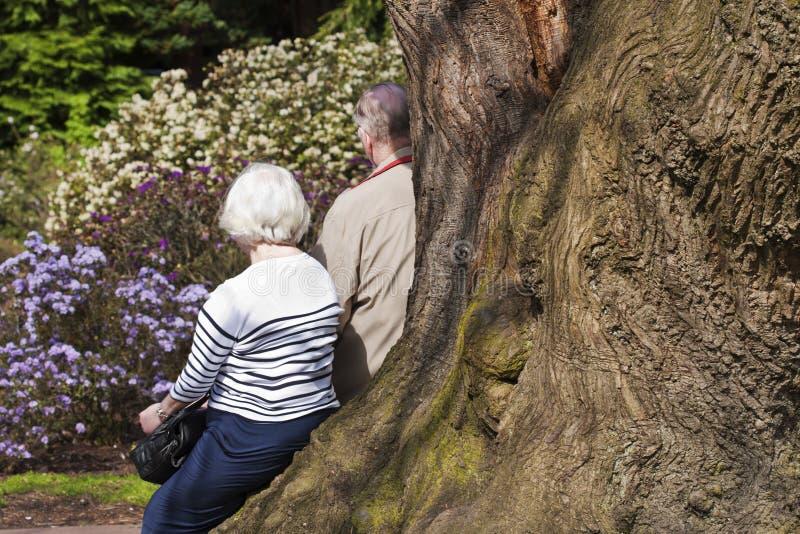 夫妇年长的人公园 免版税库存图片
