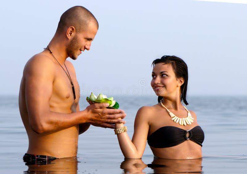 夫妇愉快的纵向海运年轻人 库存照片