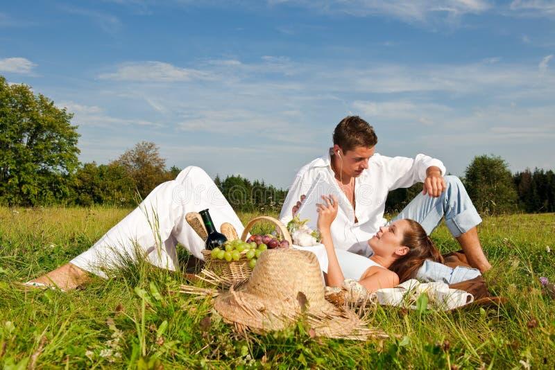 夫妇愉快的草甸野餐夏天 库存图片