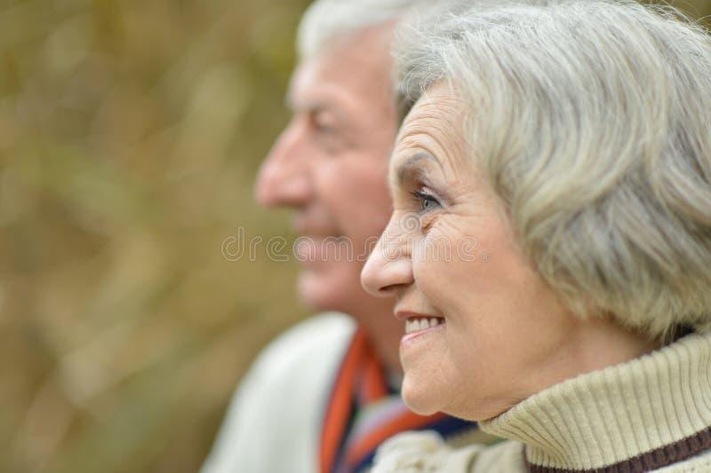 夫妇成熟纵向 免版税库存图片
