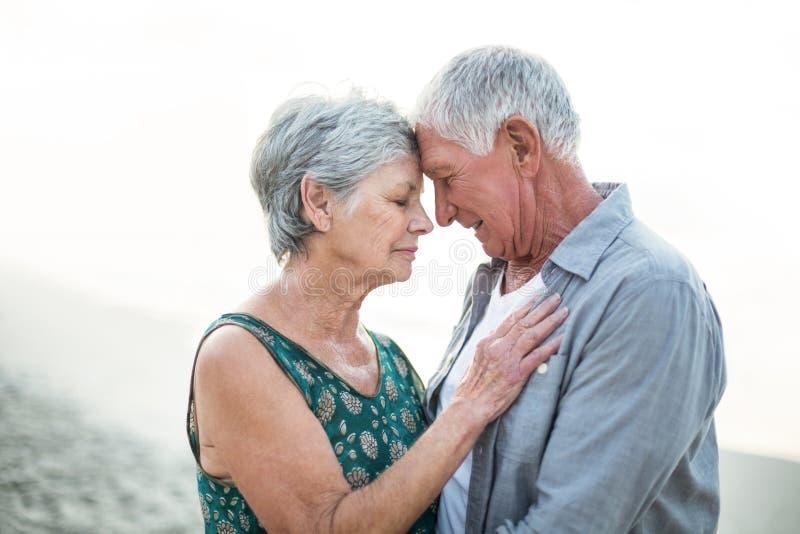 夫妇拥抱的前辈 图库摄影