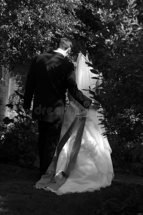 夫妇新婚佳偶葡萄园 免版税库存照片