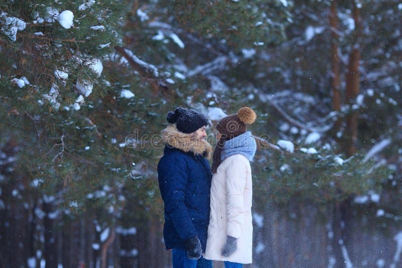 年轻夫妇有步行在冬天公园 库存照片