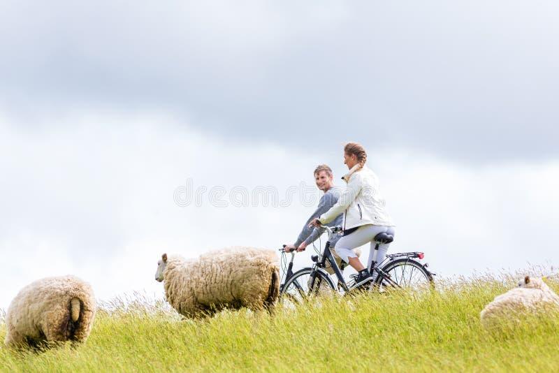夫妇有沿海自行车游览在堤坝 库存照片
