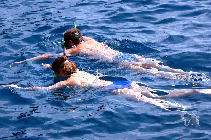 夫妇游泳 库存照片