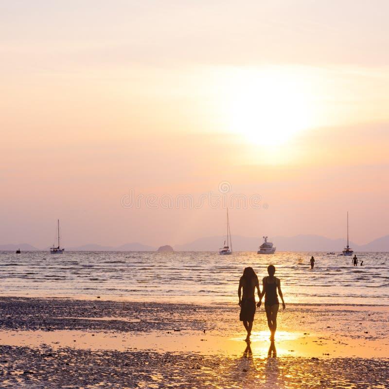 夫妇爱海滩拉丁文的统一性概念 库存图片