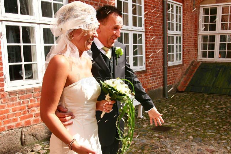 夫妇米婚礼 库存照片