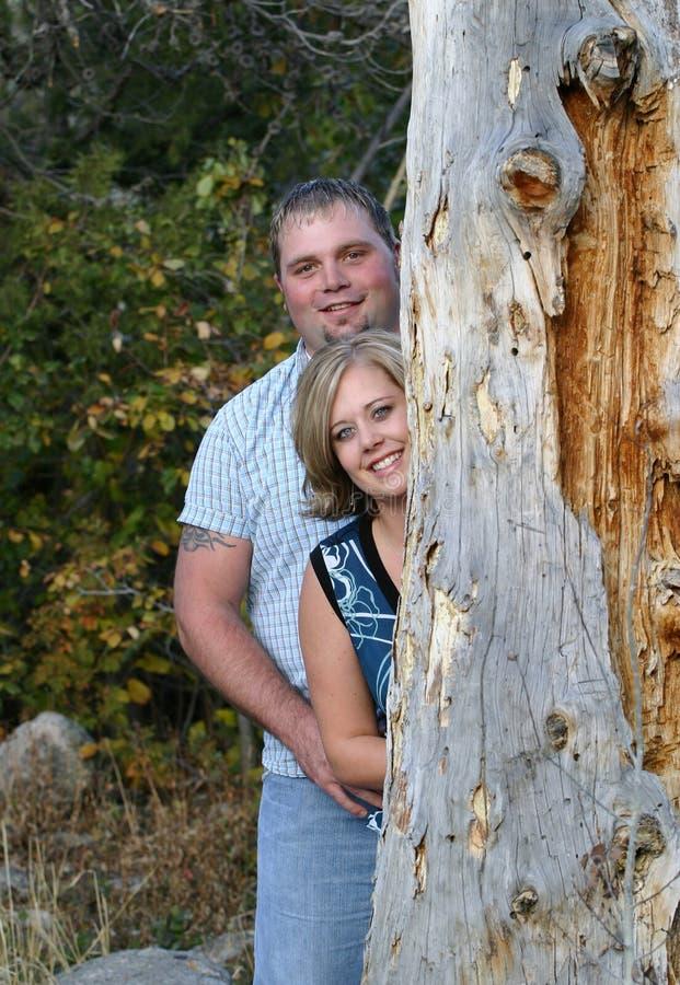 夫妇结构树 免版税库存图片