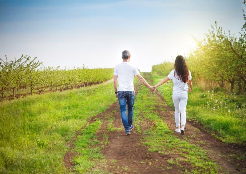 年轻夫妇获得在樱桃庭院的乐趣在春天 免版税库存照片