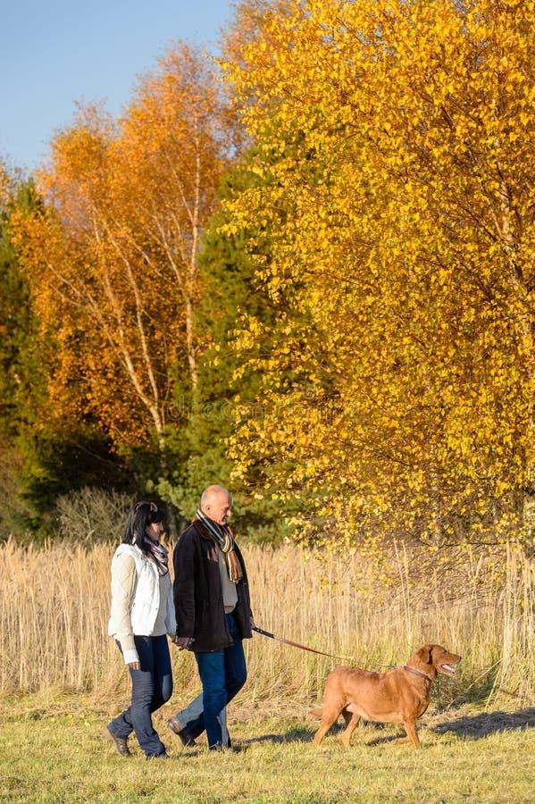 夫妇走的狗在晴朗的秋天乡下 库存照片