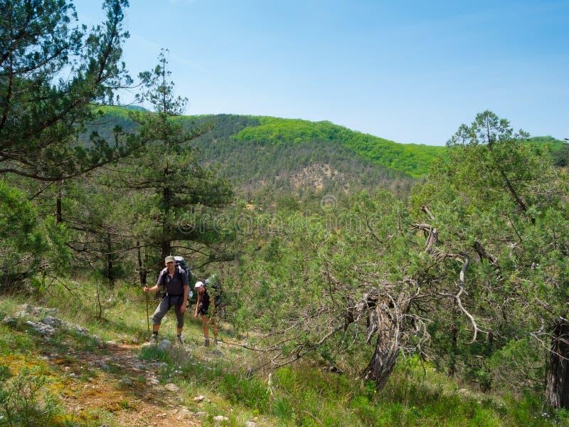 夫妇远足者走的年轻人 免版税库存图片
