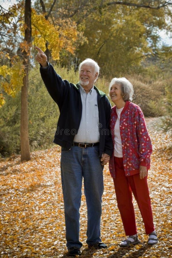 夫妇退休的统一性 库存照片