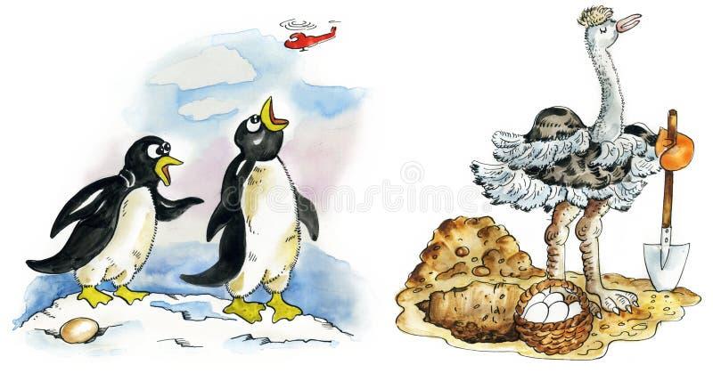 夫妇驼鸟企鹅 皇族释放例证